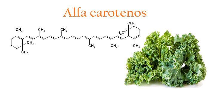 Que son los alfa carotenos y cuáles son sus propiedades