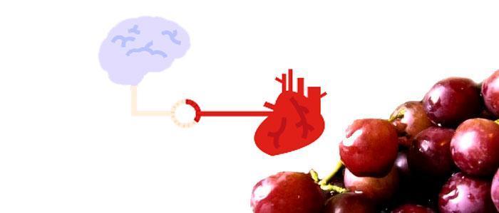 Alimentos antioxidantes con resveratrol