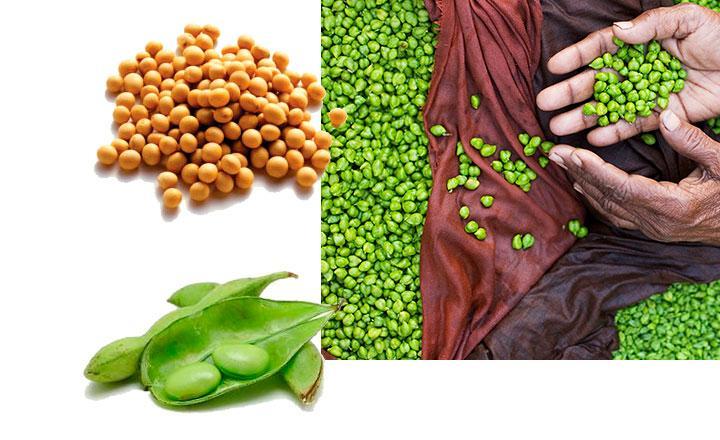 Alimentos que contienen isoflavonas de soja