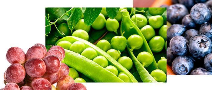 Alimentos con más antioxidantes