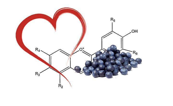 Antocianinas en alimentos, propiedades y beneficios antioxidantes