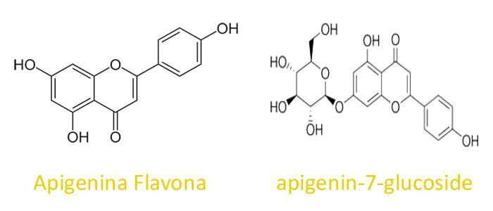 Estructura química de apigenina-7-glucoside y Apigenina