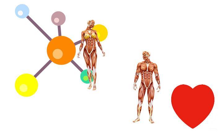 Chalconas, Síntesis, Propiedades, Usos medicinales e industriales