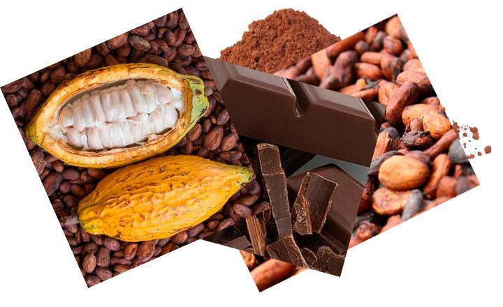 Chocolate y cacao