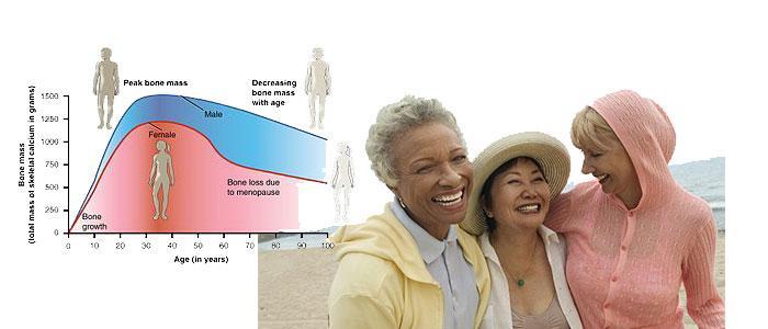 Beneficios de la isoflavona daidzeina para la menopausia