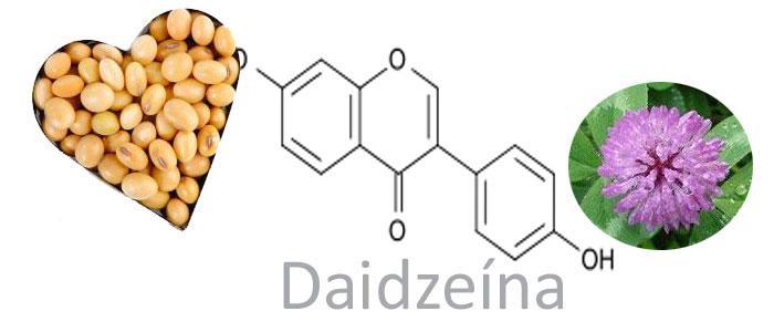 Que es y para que sirve Daidzeína