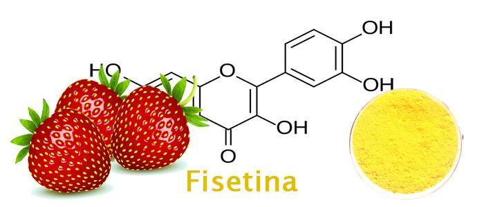 Fisetina en alimentos y suplementos con citrulina, ¿conoces sus propiedades?