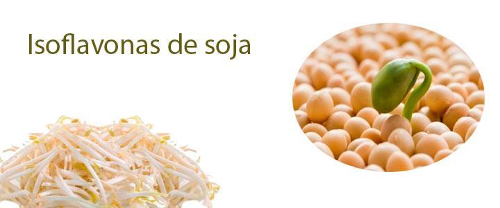 Beneficios de las isoflavonas de soja o de soya
