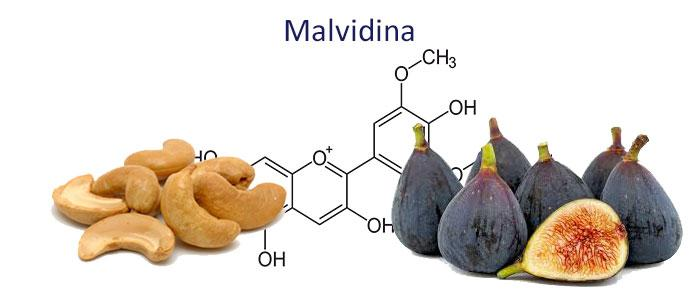 Malvidina, Propiedades, Beneficios, Alimentos y Efectos