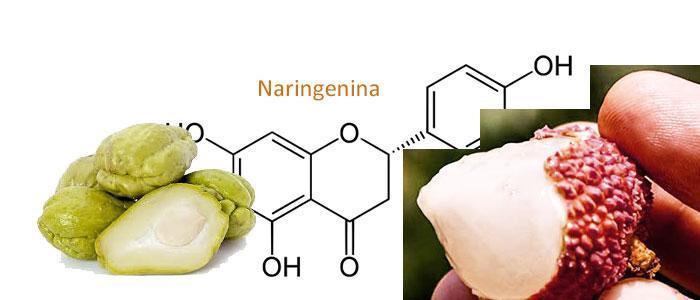 Naringenina, Propiedades, Alimentos y función en el organismo