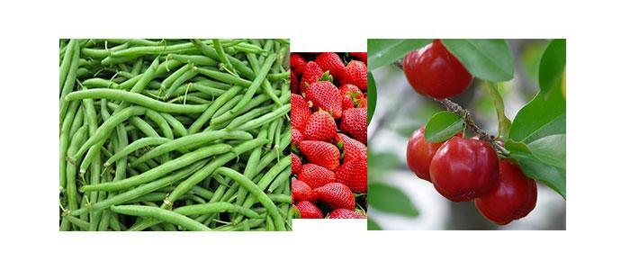 alimentos ricos en pelargonidina y plantas medicinales