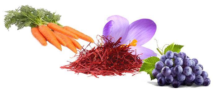 Alimentos con petunidina y antocianinas