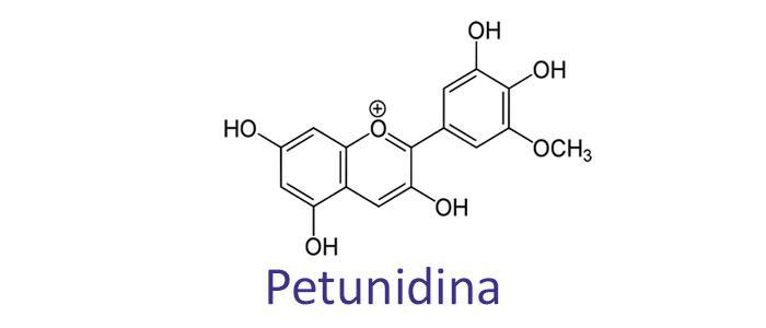 Estructura química de Petunidina (petunidin)
