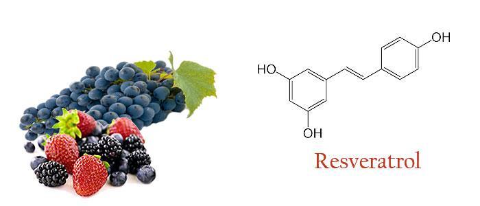 Que es resveratrol y para que sirve
