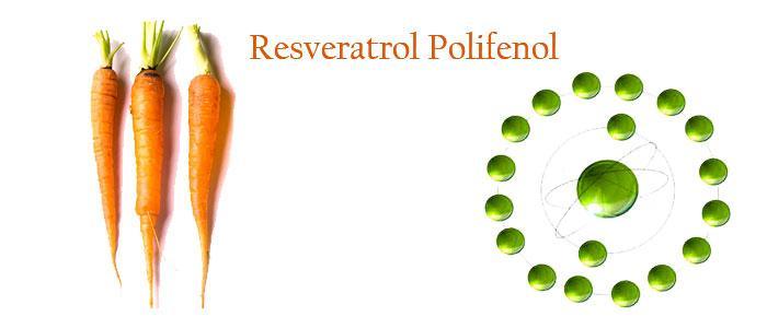 Resveratrol polifenol