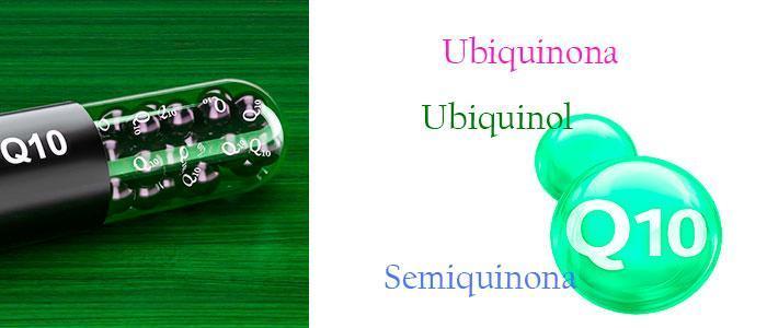 Tipos de ubiquinona coenzima q10
