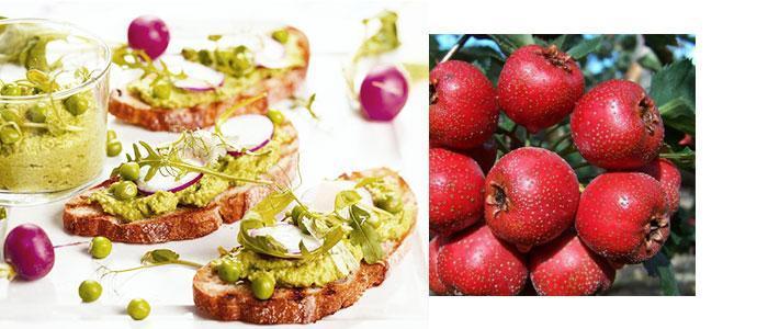 alimentos con más contenido en vitexina
